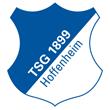 TSG 1899 Hoffenheim 15